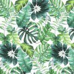 Feuilles tropicales > 100 feuilles la rame
